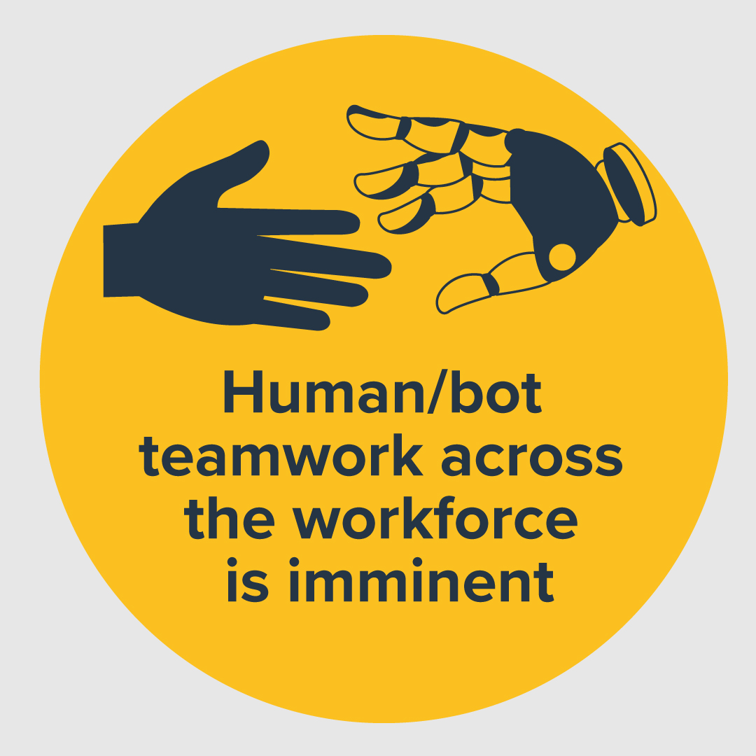 Human/bot Teamwork