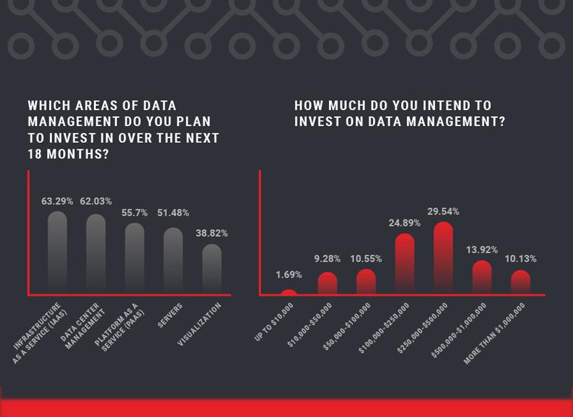 Data Management Insights