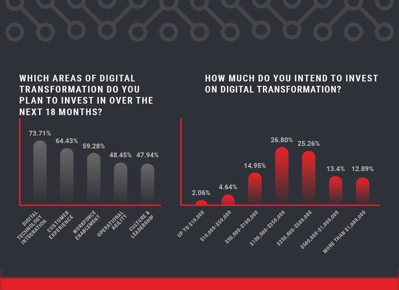 Digital Transformation Insights